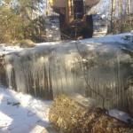 Logging Winter